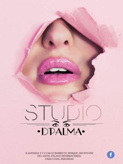 Studio De Palma